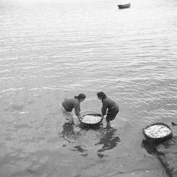 AROUSA, 1968. FOTO: JOSÉ BELLVER