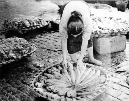 vigo-1958-foto-ramon-dimas