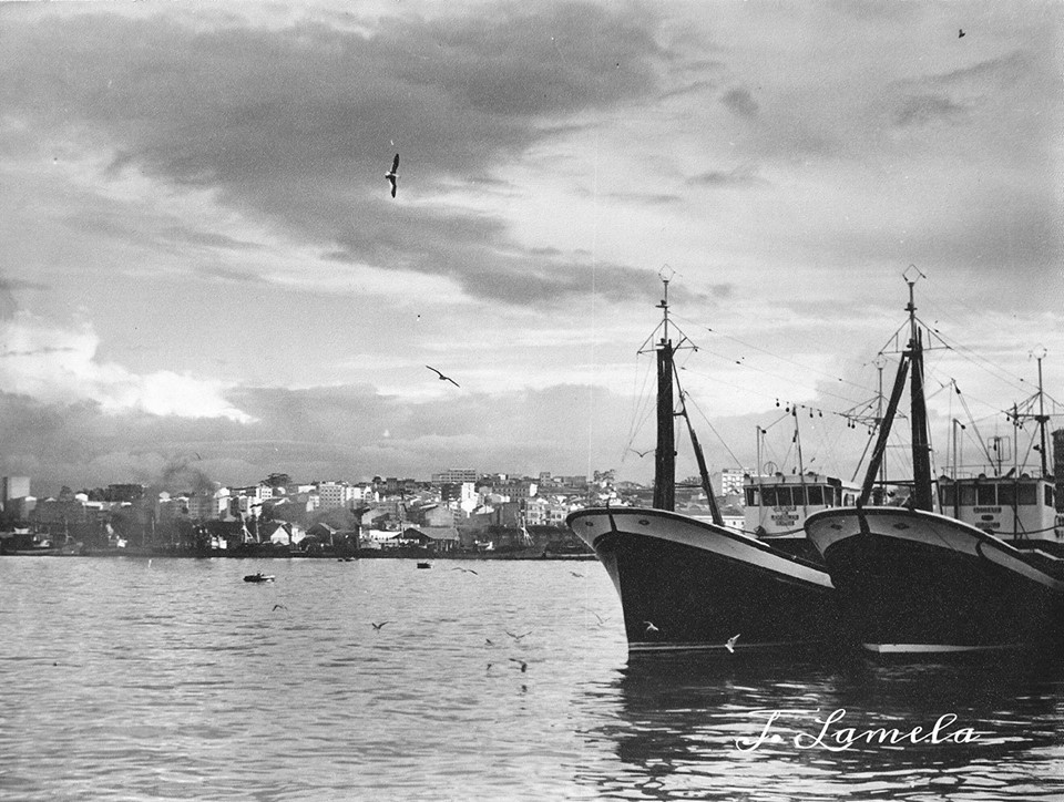 Boniteros vasco no porto de A Coruña. Anos 60s. Lamela.
