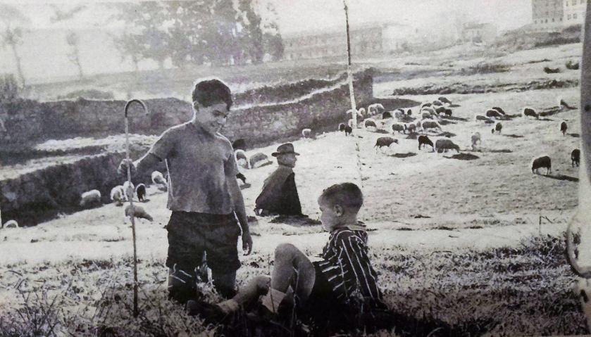 Pequenos pastores nunha das marxes de Alfonso Molina, A Marti