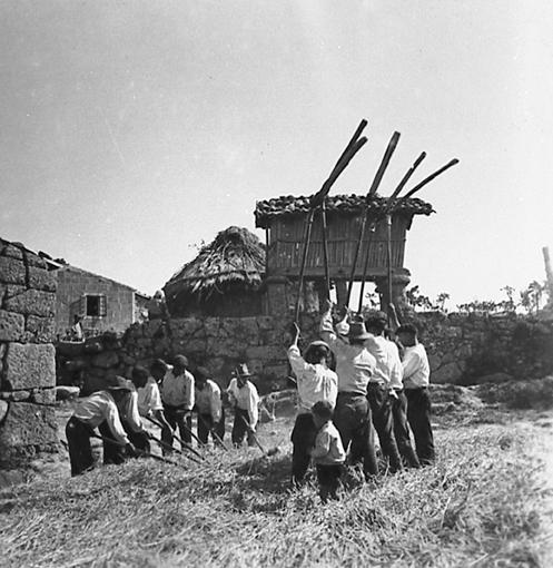 a malla 1932
